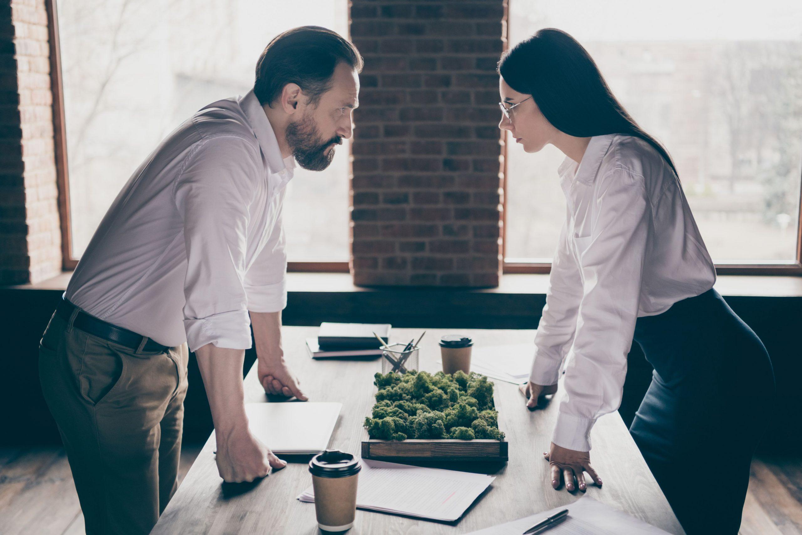 conflit actionnaires litige avocat